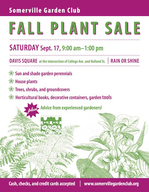 Plant Sale September 17 2016 9am-1pm Davis Square Somerville, MA